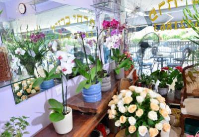 פרחי ברזיל משלוחים בארץ ובעולם